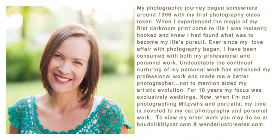 Angela Disrud Photography Bio