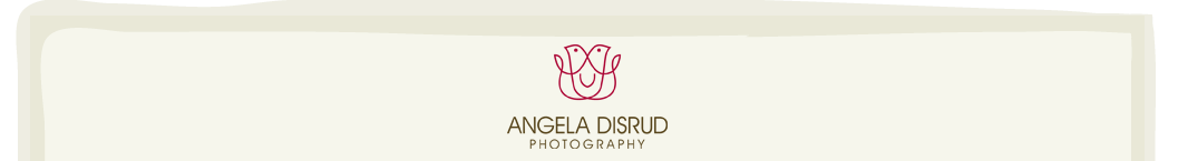 Angela Disrud Photography logo
